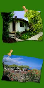 Hotel Galapagos Ecuador South America Contact Us